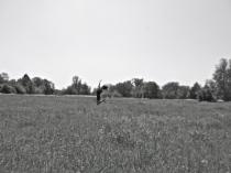 jump (taken by Keren)