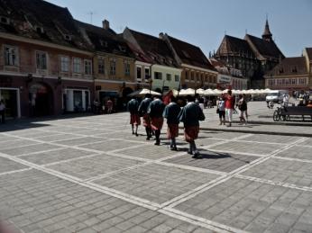 Guards (taken by Taffy)