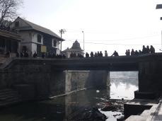 Bridge over the ghats