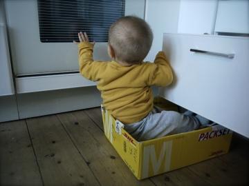 Babies arrive by DHL