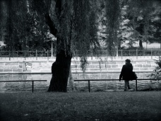Tree, canal, person I